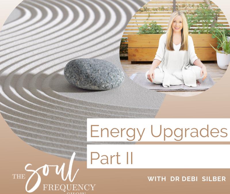Energy Upgrades Part II | Shanna Lee