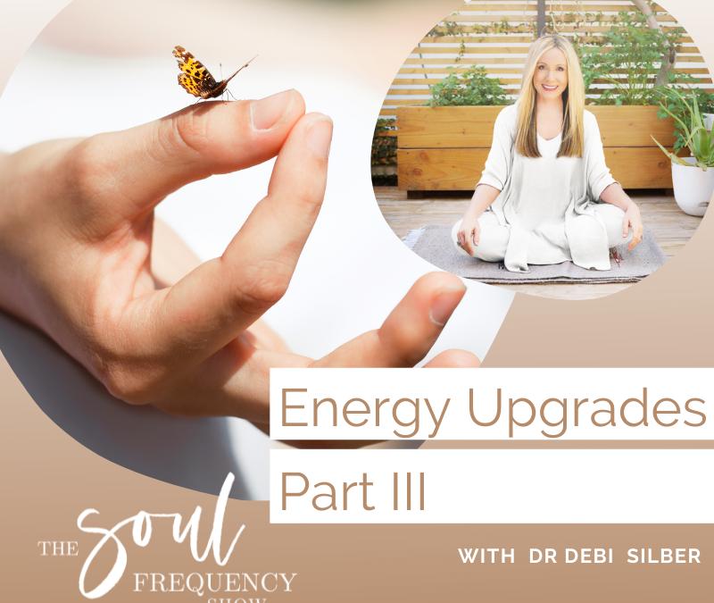 Energy Upgrades Part III | Shanna Lee