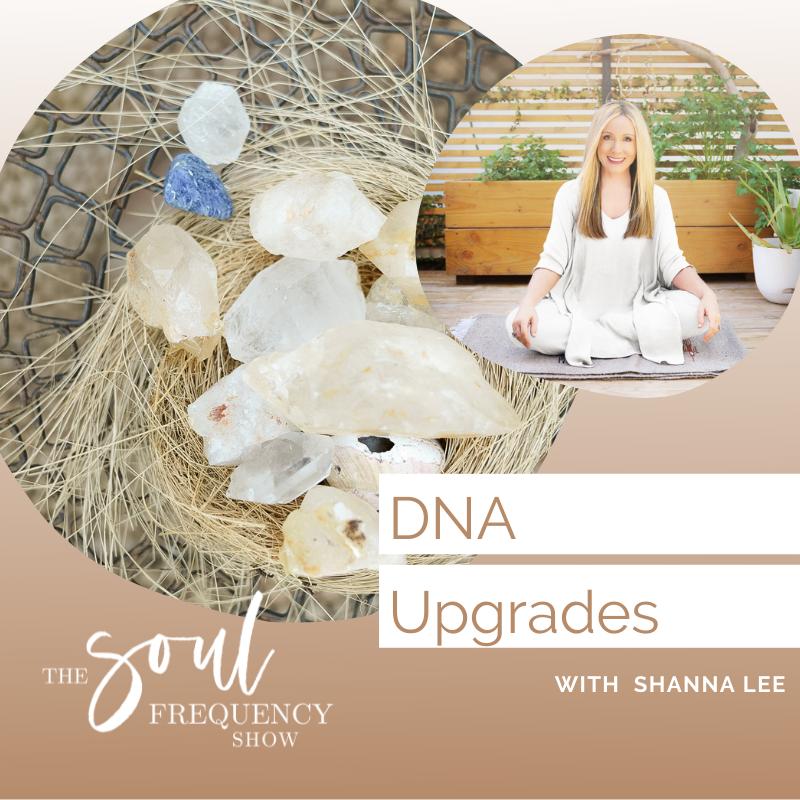 DNA Upgrades